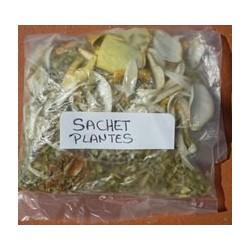 Sachet plantes DEFUNTS